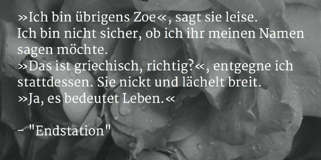 """Auszug aus """"Endstation"""", Horror-Kurzgeschichte von Sascha Dinse, 2015"""