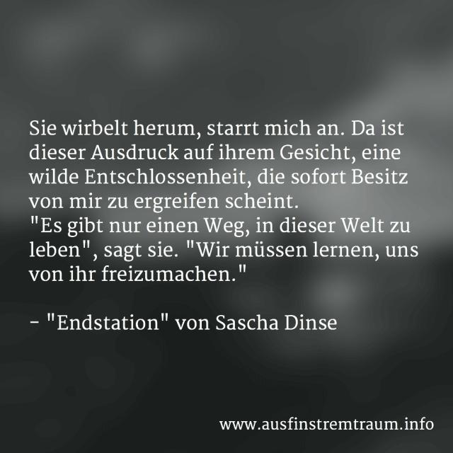 """Auszug aus """"Endstation"""" von Sascha Dinse, Horror-Kurzgeschichte"""