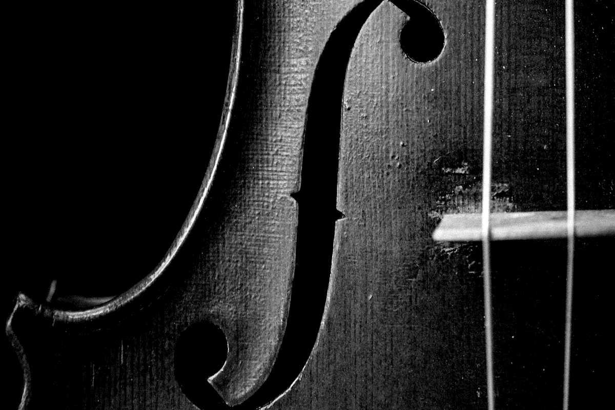 violine nahaufnahme