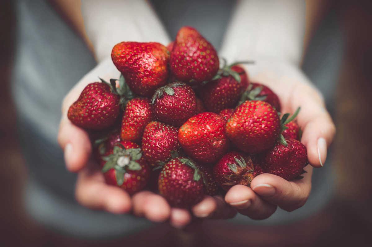 Eine Frau hält Erdbeeren in Händen
